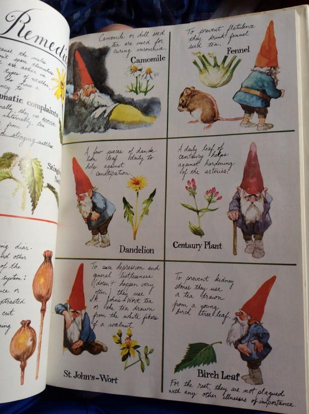 GnomeBookPage