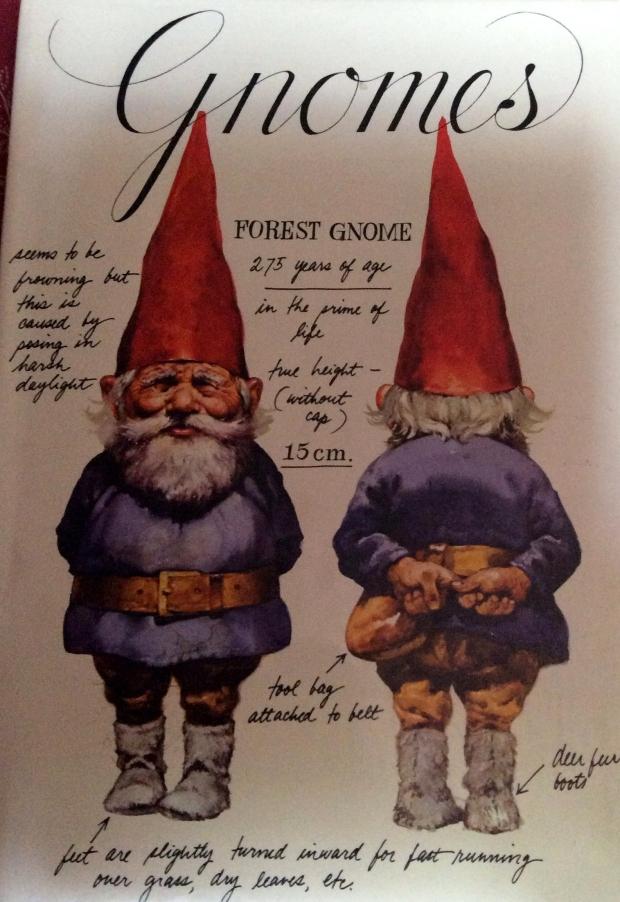 GnomesBookCover